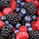 Украинские ягодники могут потерять более четверти урожая самого дорогого продукта