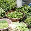 Як правильно зберігати зелень без втрати користі: дієвий лайфхак