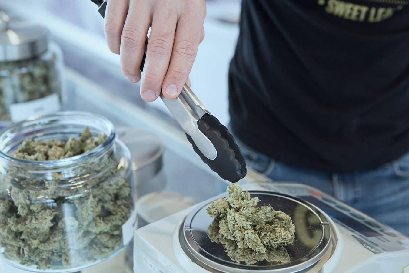 медичний канабіс, Україна, легалізація