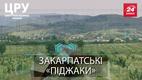 Дерибан в Закарпатье: почему 600 крестьян получили землю и отказались от нее в один день
