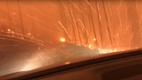 Горіла сосна, палала: батько й син показали відео свого порятунку з лісового пекла