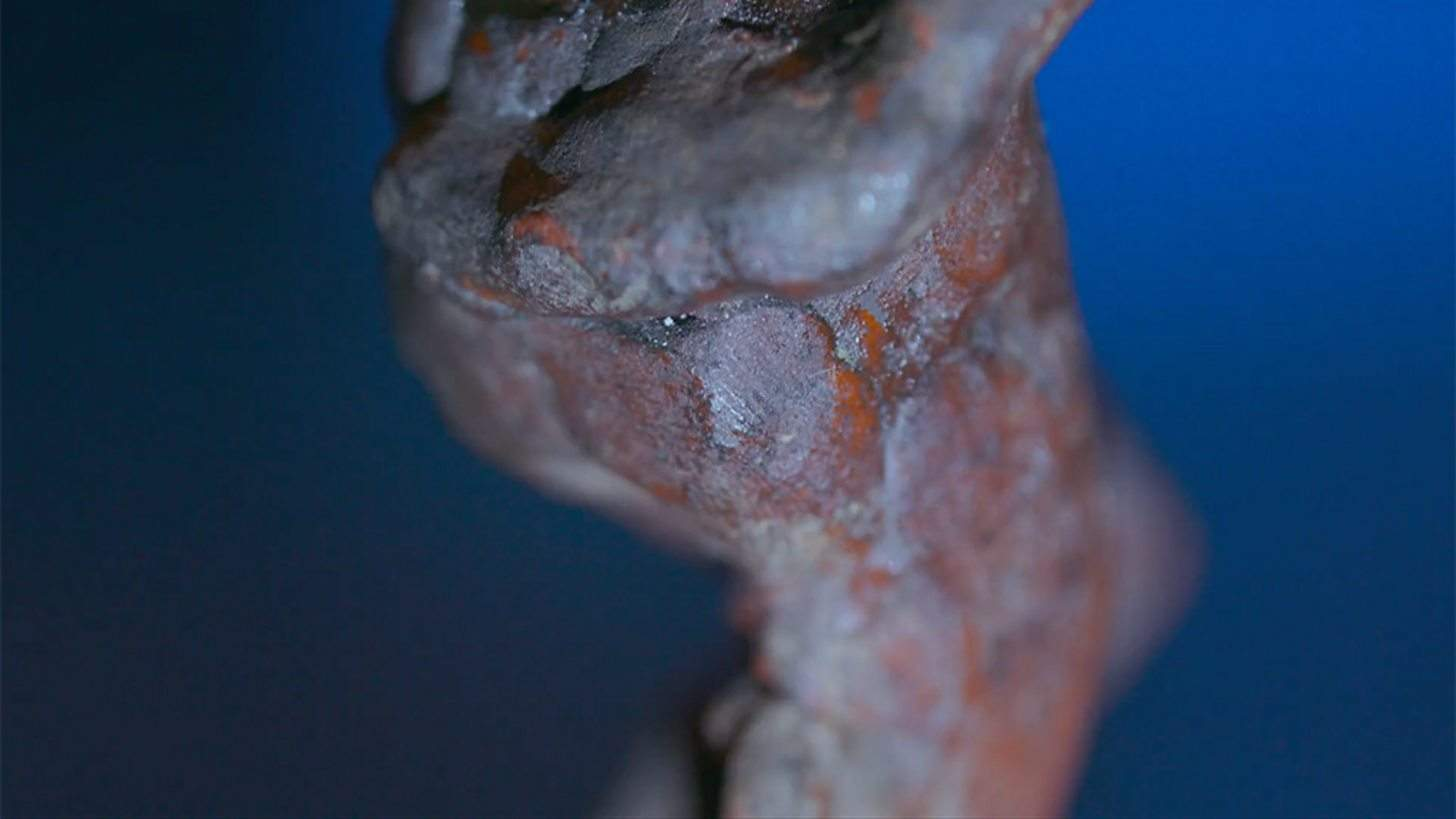 Відбиток пальця Мікеланджело