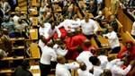 Депутаты дерутся не только в Украине: появилось видео массовой драки в парламенте ЮАР