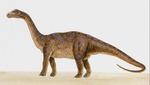 В Испании нашли остатки неизвестного окаменевшего животного: фото