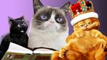 К международному дню кота: самые известные любимцы в кино
