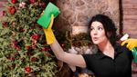 Новый год 2019: как быстро и легко убрать квартиру накануне праздников