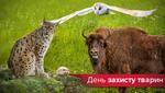 15 животных Украины, которых мы можем больше не встретить в природе