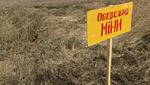 Пожилой мужчина подорвался на мине на Луганщине