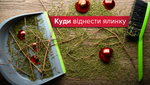 Куда отнести ёлку после праздников в Киеве и Львове: карта