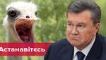 """""""Батя, вернись"""" і """"Яке воно обізяна"""": нестримна реакція соцмереж на прес-конференцію Януковича"""
