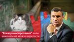 Коти як улюбленці Кличка: які петиції задовольнила Київрада