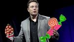 Илон Маск открывает кондитерскую фабрику