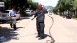 З бардачка автомобіля дістали живу триметрову королівську кобру (відео)