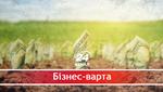 Що в Україні відбувається на ринку землі та якою повинна бути земельна реформа