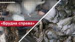 Небезпечно для життя: як в Україні процвітає шкідливий бізнес