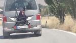 Пасажирські перевезення по-турецькі шокували світ (відео)