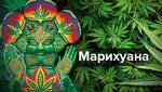 За межею реальності: що відчуває людина під дією марихуани