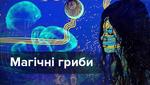 Дегустація реальності: досвід вживання псилоцибінових грибів