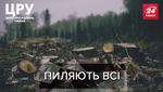 Все знают, и ничего не делают: как на Харьковщине нагло разворовывают десятки гектаров леса