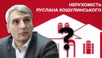 Дом Кошулинского: что известно о поместьях кандидата в президенты