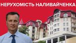Нерухомість Валентина Наливайченка: що відомо про власність кандидата в президенти