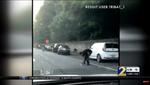 Инкассаторы разбросали по дороге 175 тысяч долларов: видео