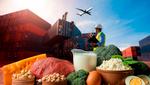 Украинский экспорт: каких продуктов продаем больше