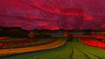 Ринок землі: фермерам – кредити, олігархам – обмеження