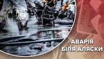 """Смерть сотень тисяч тварин: шокуючі наслідки аварії нафтового танкера """"Ексон Вальдіз"""""""