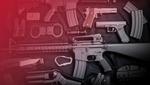 "Легализация оружия в Украине: ""за"" и ""против"" инициативы"