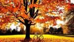 5 листопада – яке сьогодні свято та що не можна робити в цей день