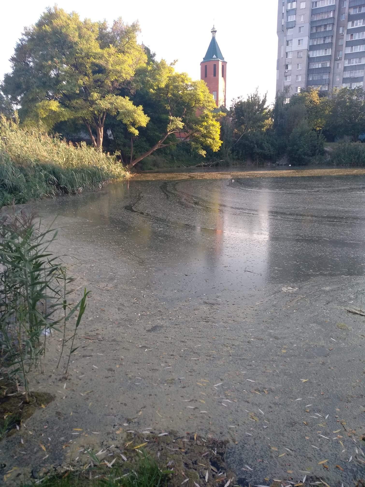 Помирає озеро з черепахами в Дніпрі