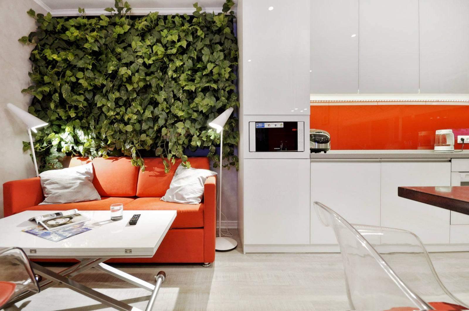 Акцентна стіна з зеленими рослинами