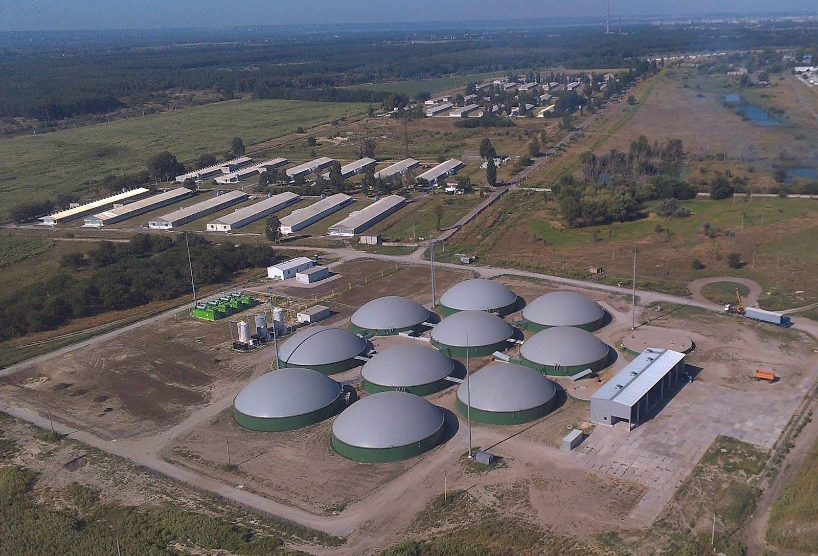 МХП має екологічний підхід до виробництва