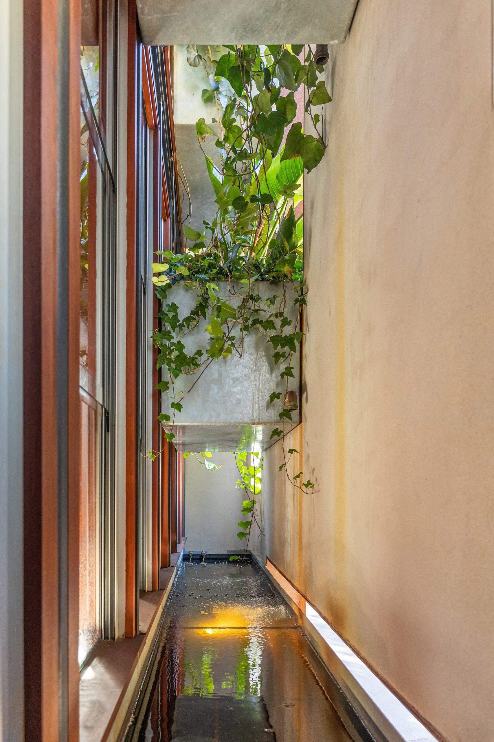 Зі стелі нависають кущові вазони / Фото Deezen