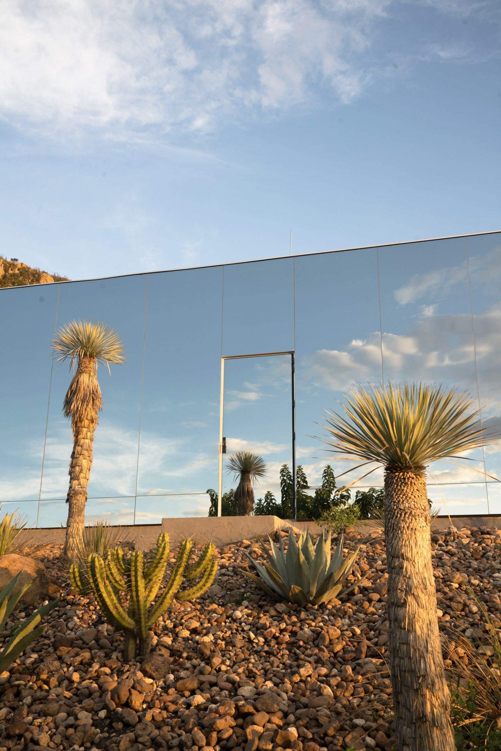 Скляний фасад чудово компанує із дикою природою / Фото Dezeen