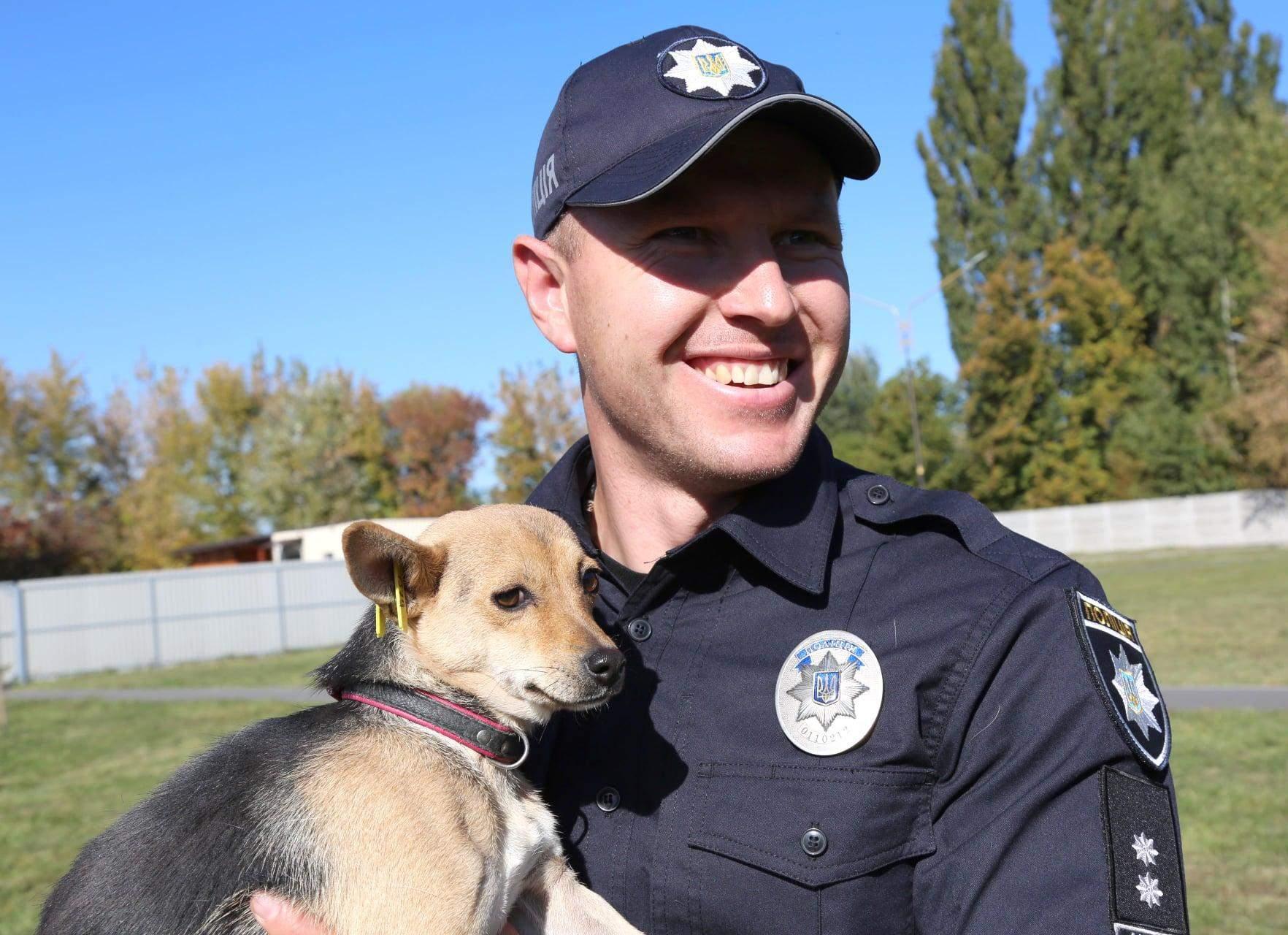 Поліцейські у Вінниці зробили яскраву фотосесію з собаками у притулку: неймовірні фото
