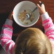 Удосконалення системи харчування: В Україні розпочалась перевірка шкіл