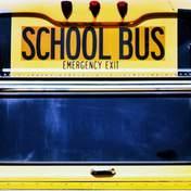 В виде автобуса: школьного водителя из США похоронят в специальном гробу – фото