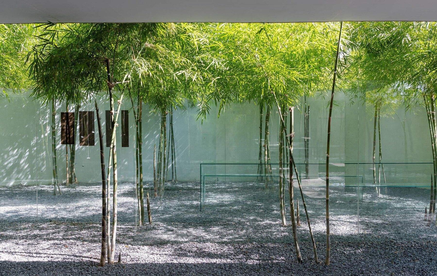 Сад у якому можна творити / Фото Designboom