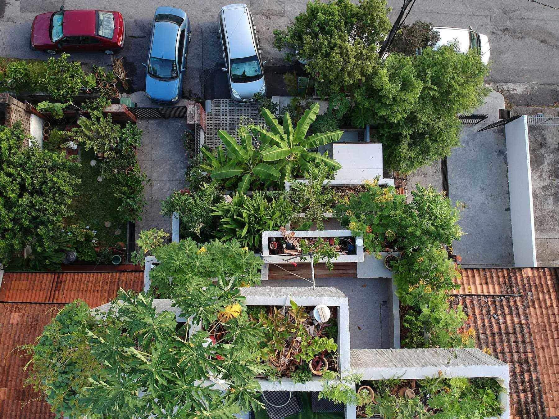 Тут вирощують понад 40 видів їстівних рослин