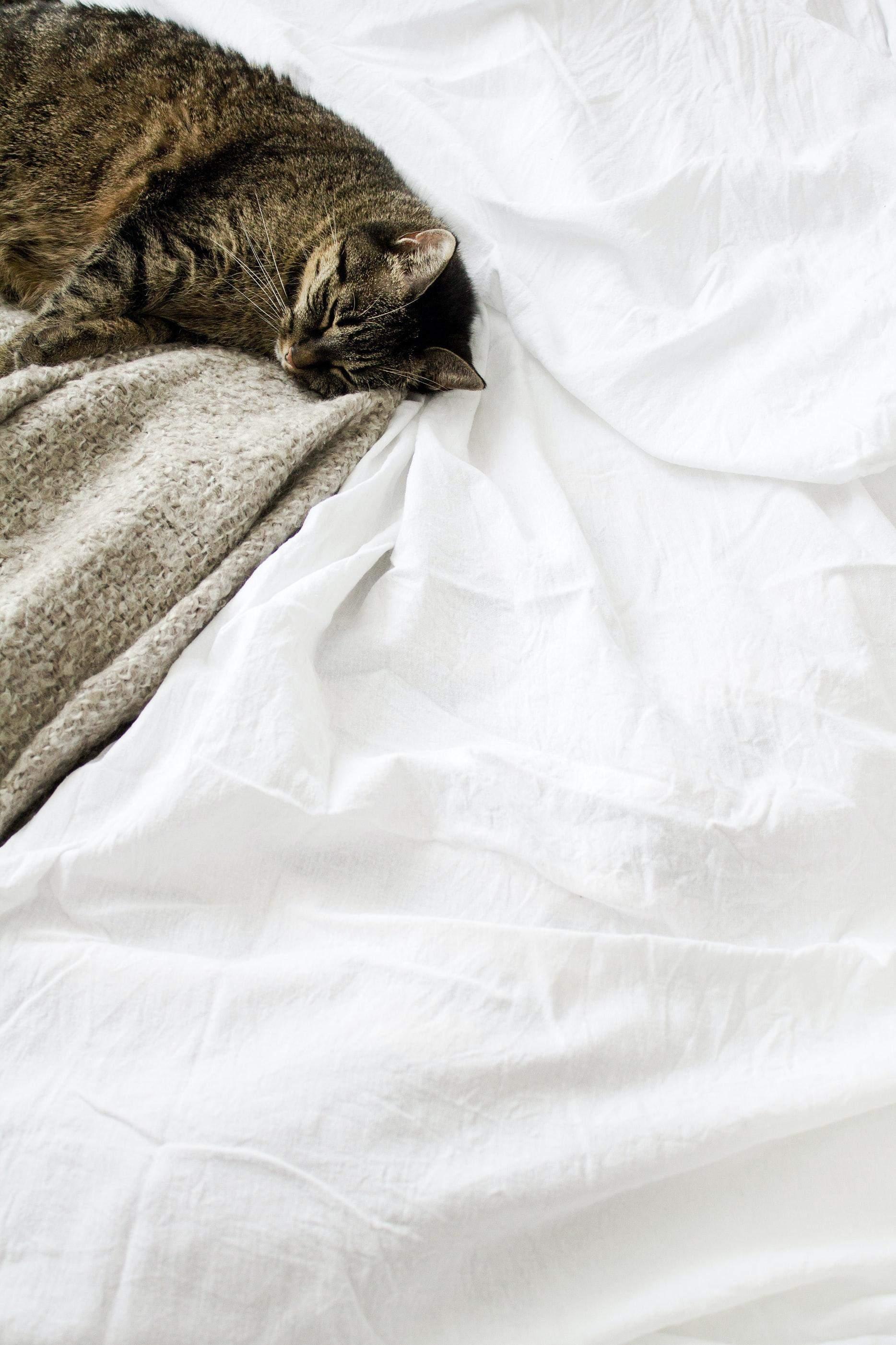 Як зміцнити сон