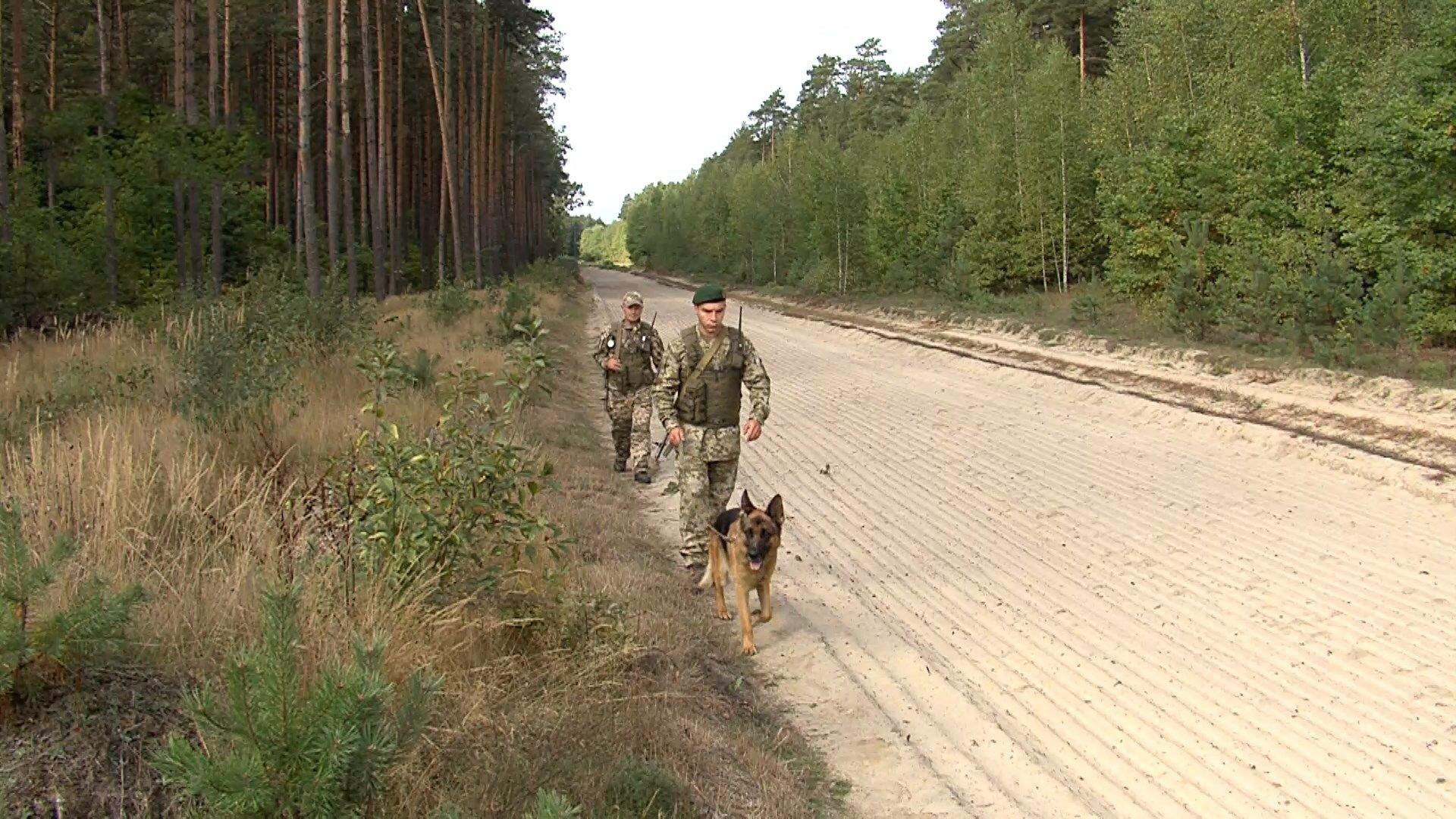 прикордонники патрулюють кордон з білоруссю