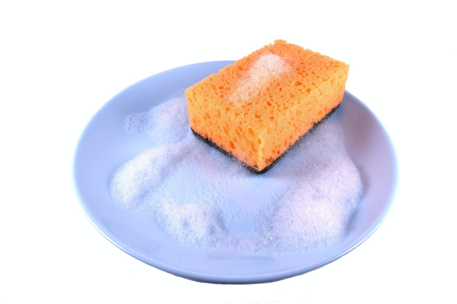 На кухонних губках багато бактерій