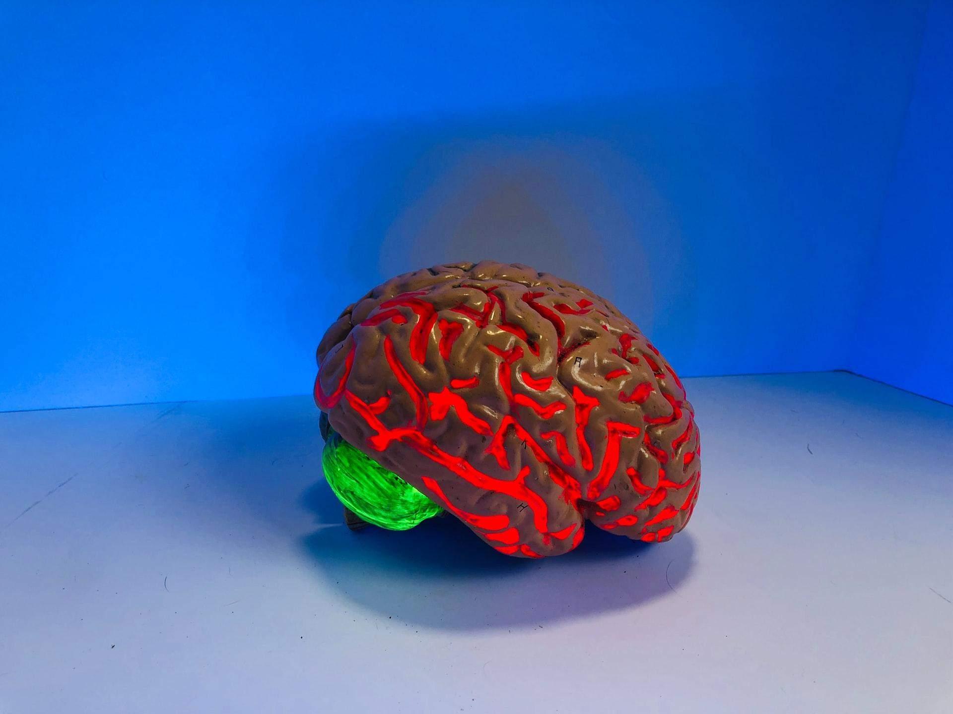 Вплив коронавірусу на мозок