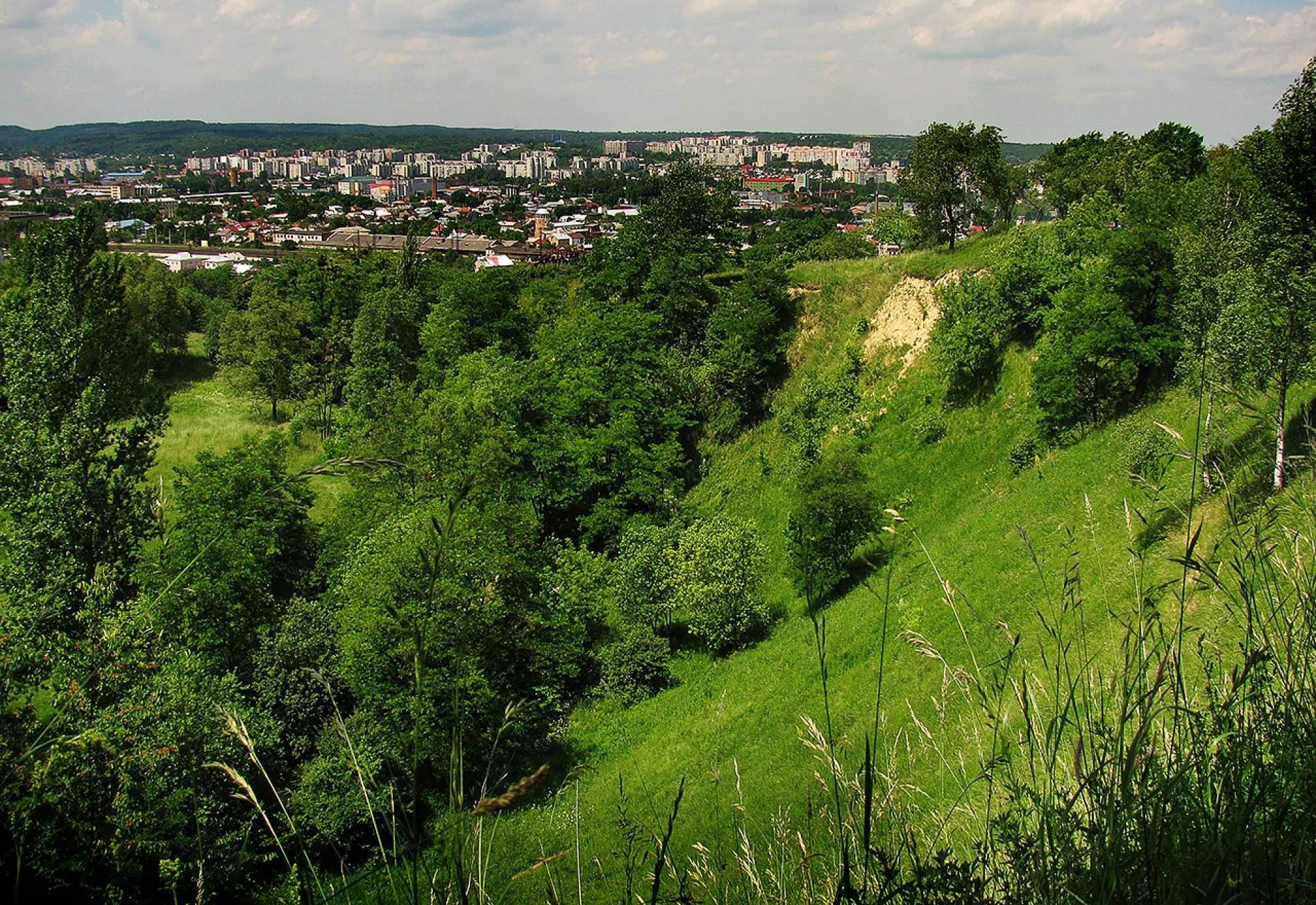 Де у Львові можна влаштувати пікнік: підбірка найкращих локацій для відпочинку