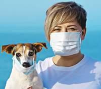 Доказали, что собака может заразиться коронавирусом от человека