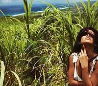 Летимо на Барбадос: на батьківщині Ріанни планують давати візи для віддалених працівників