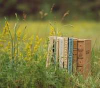 Книги з літньою атмосферою: список