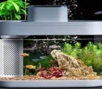 Xiaomi разработала умный аквариум с автокормушкой